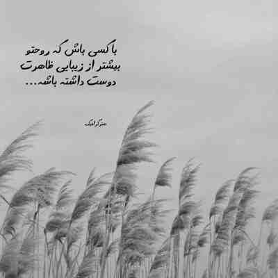 آهنگ دلم هزار پاره شد